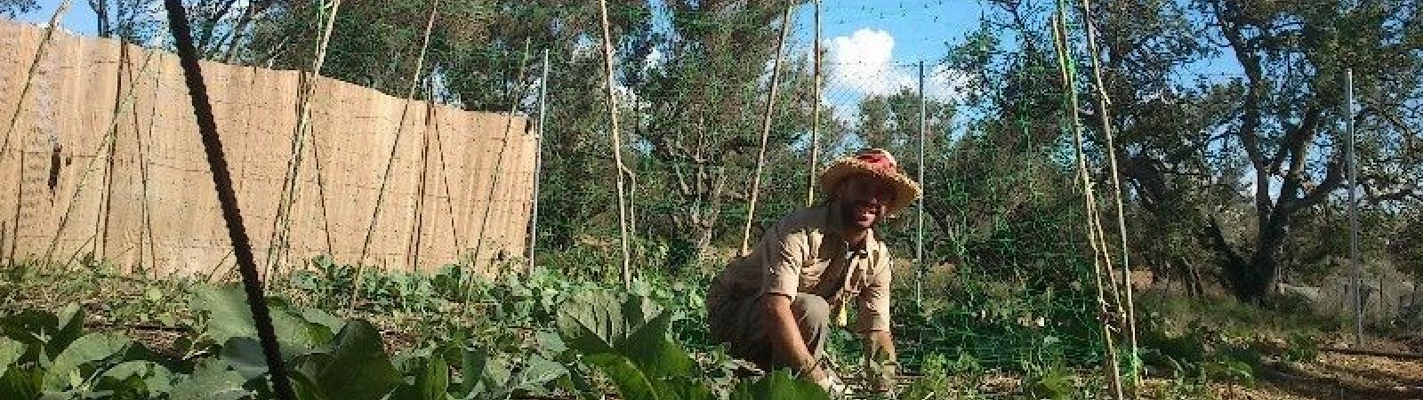 Be a WWOOF Host | WWOOF Chile